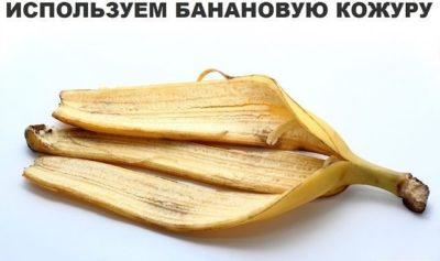 https://www.ok.ru/group/55344785784846
