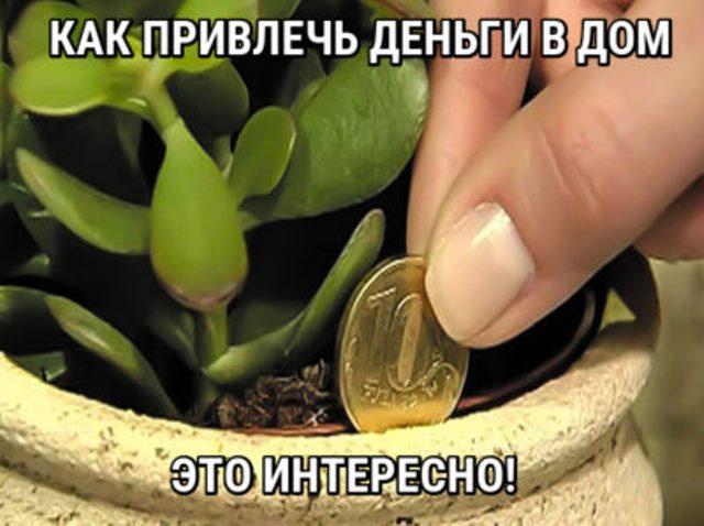 Как привлечь деньги в дом