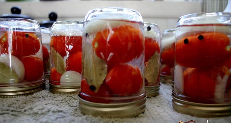 Засолка помидоров холодным способом на зиму