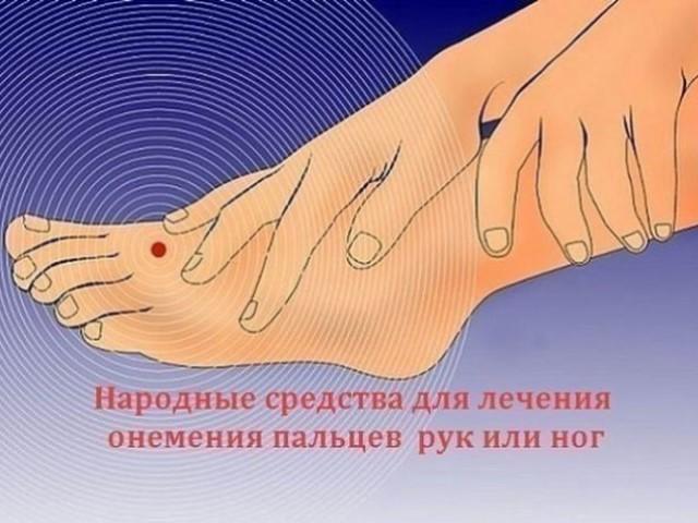 Народные средства от онемения рук и ног.