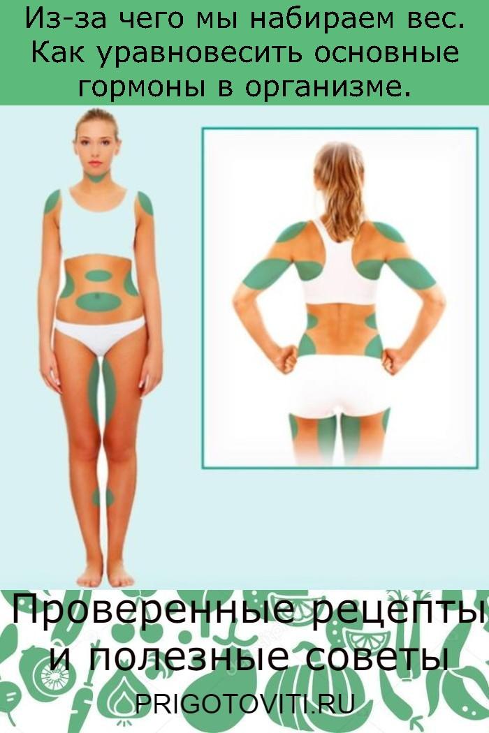Из-за чего мы набираем вес. Как уравновесить основные гормоны в организме.