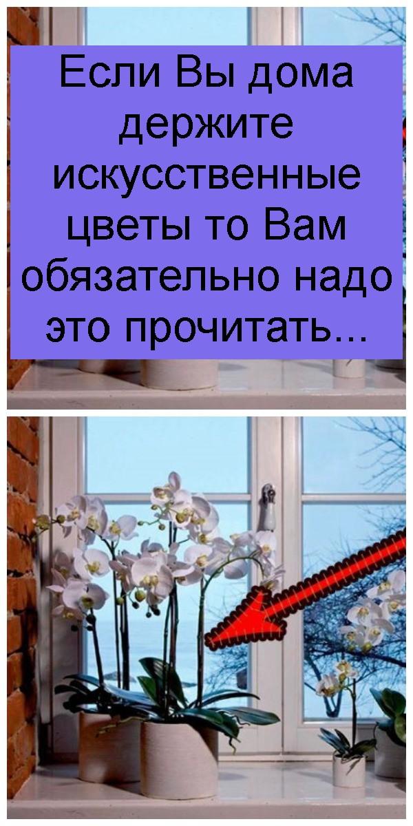 Если Вы дома держите искусственные цветы то Вам обязательно надо это прочитать 4